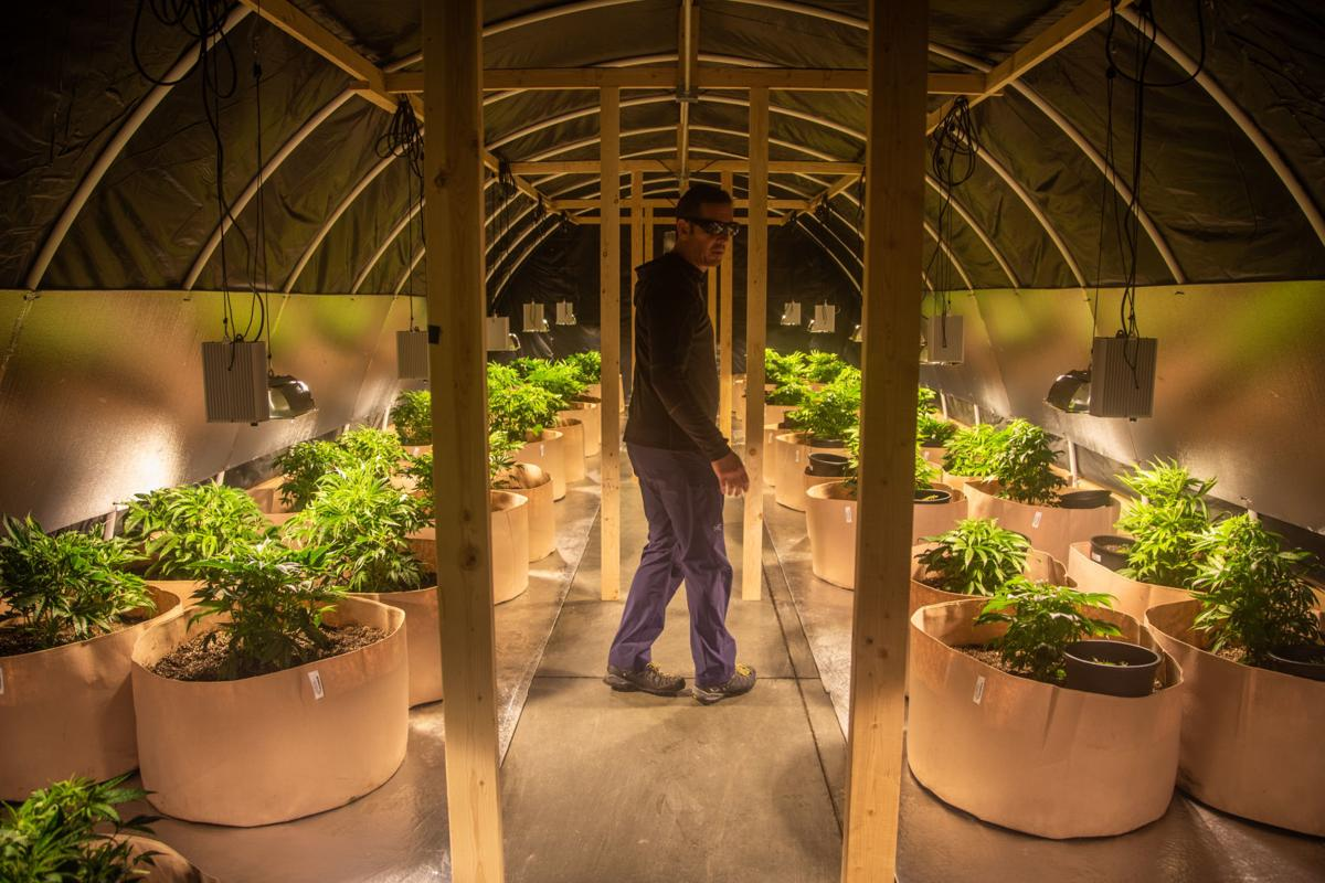 Cache Valley Daily: First Cache Valley cannabis dispensary coming to North Logan