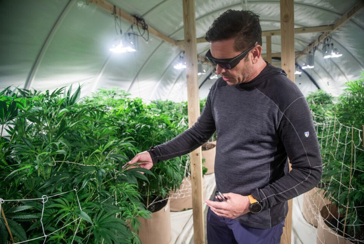 Herald Journal: Future Logan company awarded state medical cannabis pharmacy license